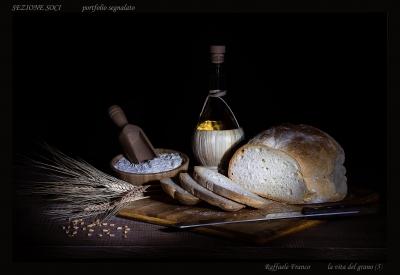Sezione Soci (Fuori Concorso) - Portfolio di Raffaele Franco (5)